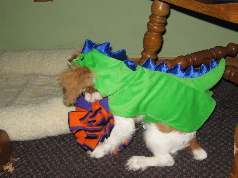 Finnegan the Dragon!!